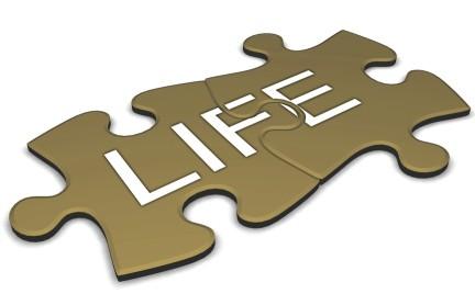 life_puzzle