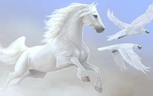 Beautiful-Horse-horses-22410557-500-313