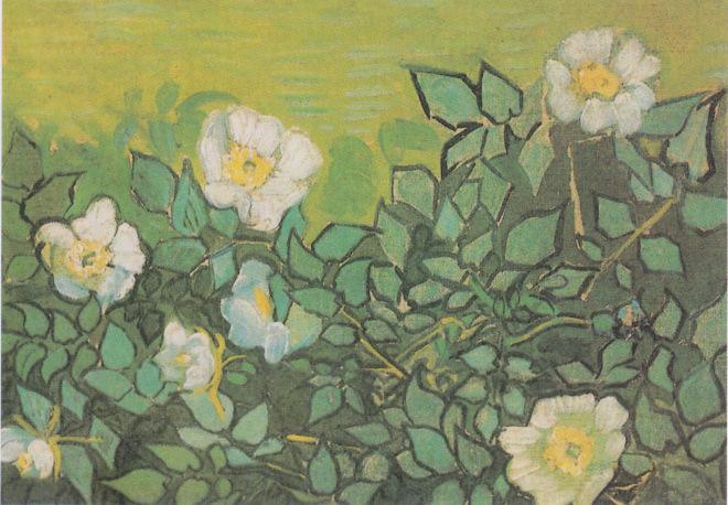 Van_Gogh_-_Wilde_Rosen