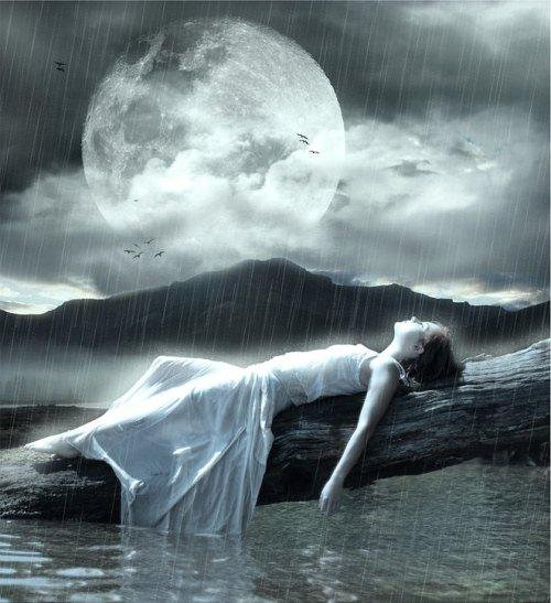 laying wet by the moon